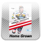 Logo Home-Grown