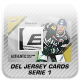 Logo DEL Serie 1 Jersey Cards 17-18