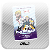 Logo DEL2 Playercards